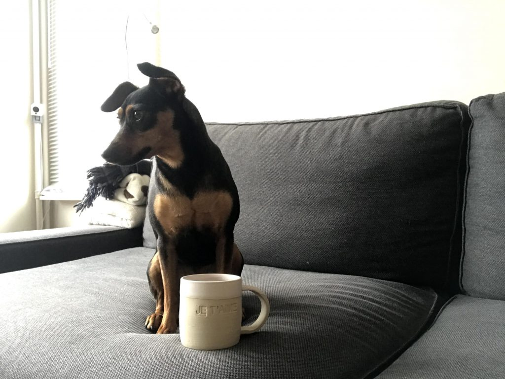 Pixie avec un mug